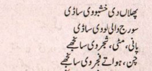 Dr Nayer Samdani - Punjabi Poem