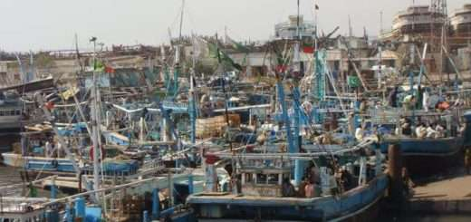 Pakistani Fisheries