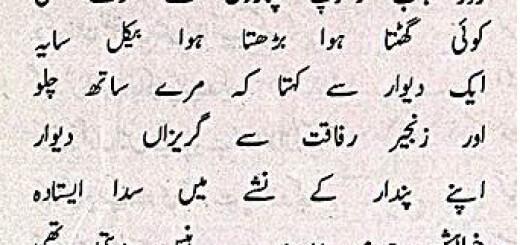 deewar aur saya - ahmad faraz poem