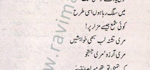 Tu Na Mil Saka – Urdu Poem Babar Asee