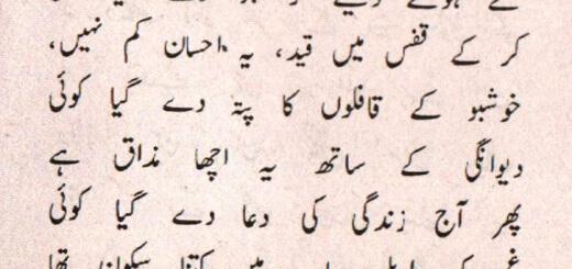 Urdu Ghazal by Solat Rahman